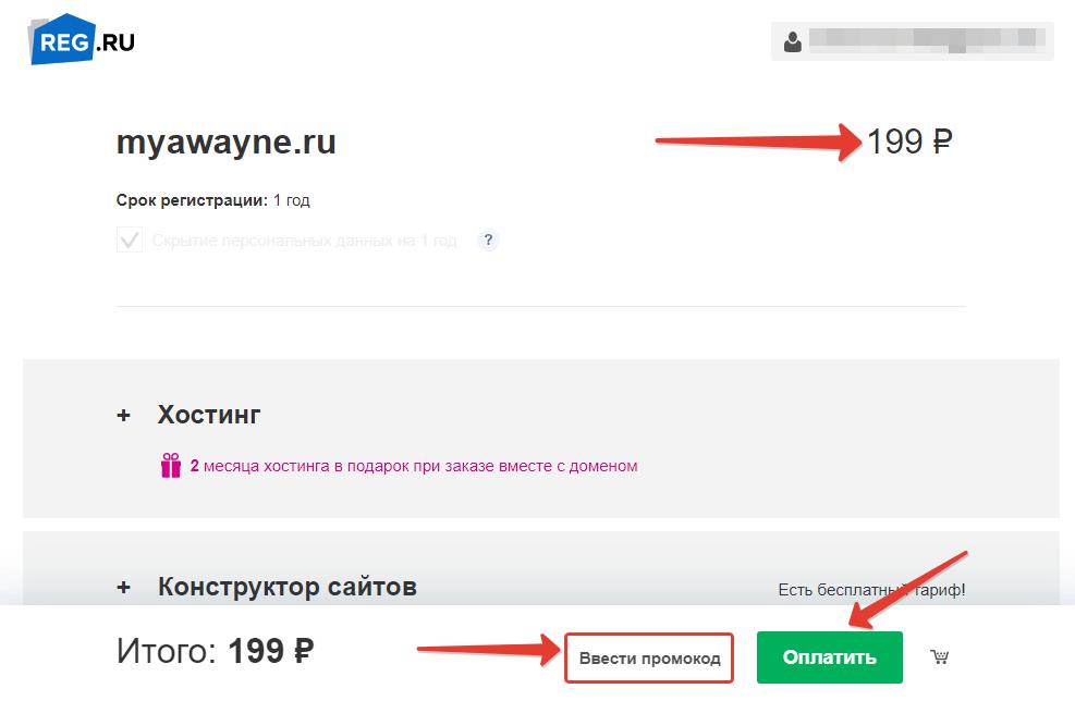 Оплата домена в REG.RU
